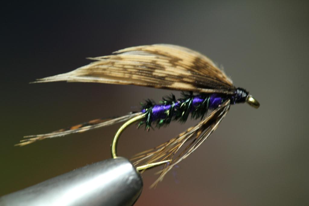 wet flies | bakslengen, Fly Fishing Bait