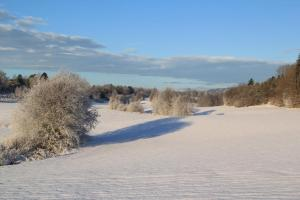 Vinter på farmen 1