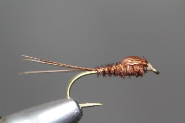 Pheasant Tail 1