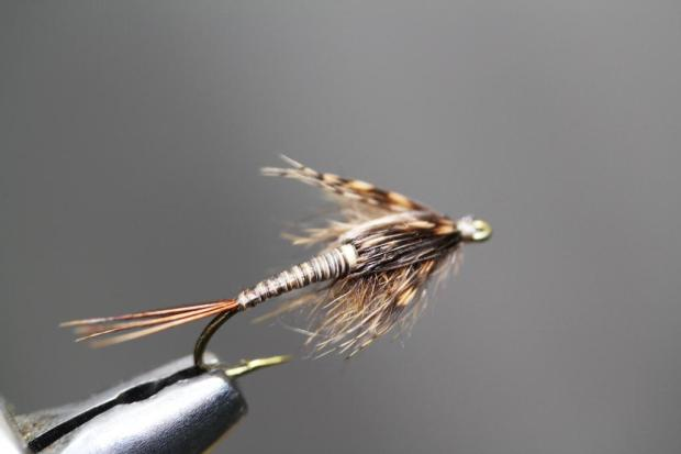 Quill Nymph 1